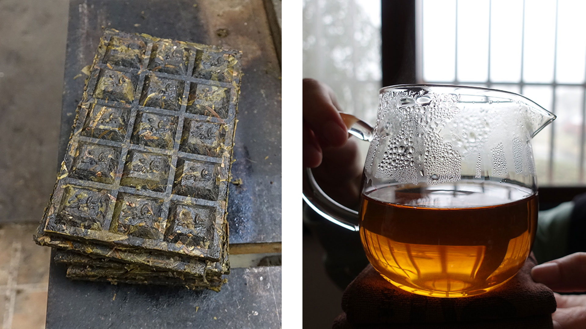 yuntai-pressed-tea-and-tea-elixir