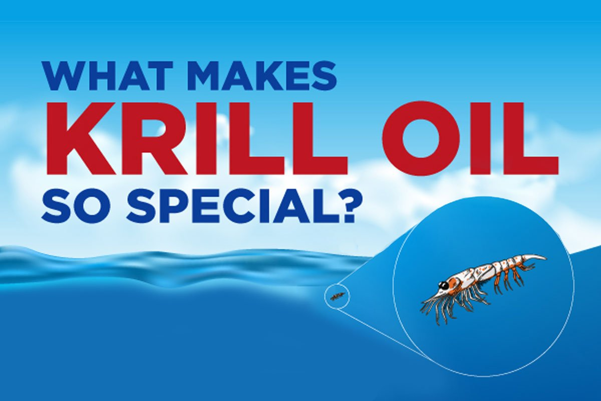 what-makes-krill-so-special